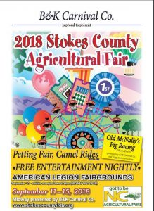 2018 Stokes County Fair Book